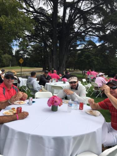 Flamingo 2016