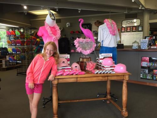 Flamingo 2015